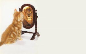 zelfbewust zijn - zie jij, zie jij, wat zij zien in jou